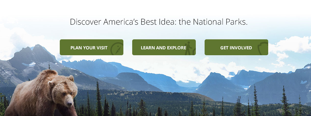 "Screenshot of NPS website that reads ""Discover America's Best Idea: the National Parks"""